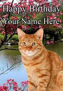Ginger cat all occasions personalised greeting card birthday pid790 image is loading ginger cat all occasions personalised greeting card birthday m4hsunfo