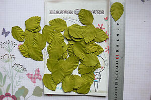 LEAVES-Light-GREEN-MEDIUM-50-Pack-Paper-35mm-long-x-25mm-wide-Manor-House
