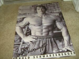 ARNOLD-SCHWARZENEGGER-muscle-bodybuilding-fitness-PORTRAIT-OF-AN-ICON-poster