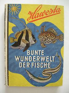 """Hawesta Sammelbilderalbum """"Bunte Wunderwelt der Fische Band 1"""", 1952, komplett"""