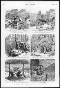 1886-Antique-Print-HIMALAYAS-Hill-Station-Tonga-Masher-Garial-Camp-Dog-253