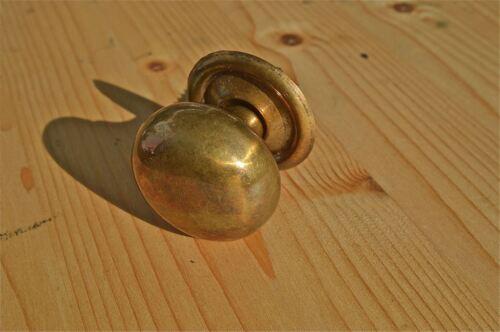 Antiques Hardware Gran estilo victoriano de latón Hongo Perilla Pino Aparador Mango Pull Tornillo en Wh28