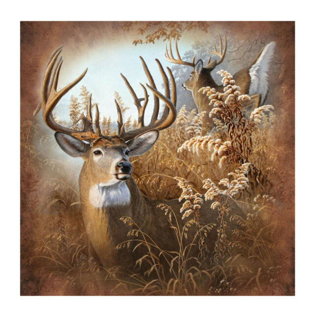 New Deer 70 Fabric Bath Shower Curtain Rustic Bathroom Hunting Cabin Home Decor