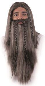 PERRUQUE-Barbe-MAGE-Grise-Deguisement-Homme-Druide-Magicien-Sorcier-NEUF