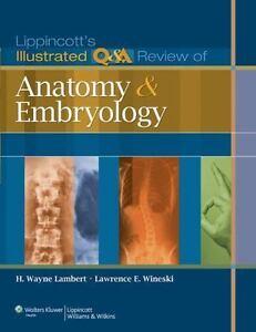 Clinically Oriented Anatomy 5th Edition Pdf