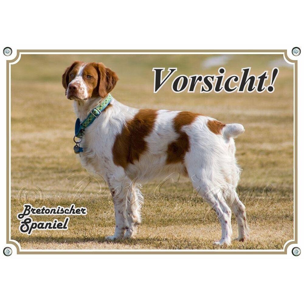 TARGHETTA per cani-Epagneul Breton-Qualità Top Stampa