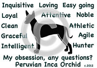 Peruvian Inca Orchid Dog My Obsession,questions? T-shirt Choices Of Size Color
