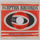 THE SHIRELLES: Thank You Baby SCEPTER Northern Soul 45 w/ Company Sleeve NM
