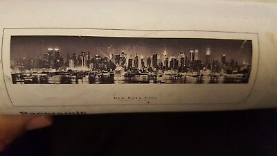 """New Panoramic Framing Poster New York City Empire State Building 39.875""""x13.5"""""""
