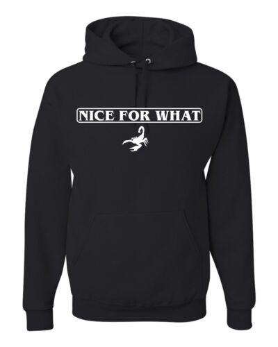 Nice for What Scorpion Unisex Hoodie Sweatshirt Drake