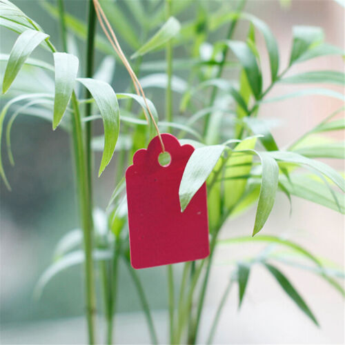 100Pcs Jewelry Garment Merchandise Gardening Brand Label Price Tags 4.5* Gh