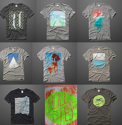 Hollister By Abercrombie & Fitch Graphic Tee t Shirt  Muscle Fit Men's