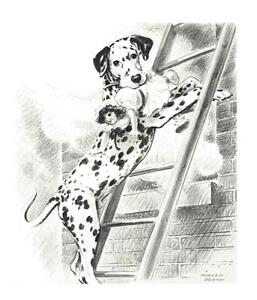 Dalmatian-Morgan-Dennis-Dog-Print-MATTED