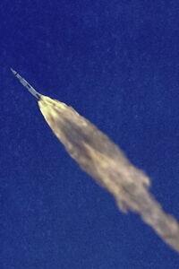 New-5x7-NASA-Photo-Saturn-V-Moon-Rocket-of-Apollo-10-Launch-1969