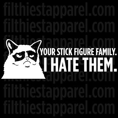 "GRUMPY CAT ""YOUR STICK FIGURE FAMILY. I HATE THEM"" Meme Vinyl Decal Sticker"