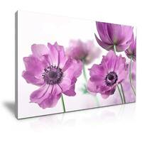 Large Poppy Flower Canvas Wall Art Picture Print A1 76x50cm 19
