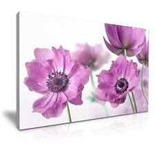 Large Poppy Flower Canvas Wall Art Picture Print 76x50cm