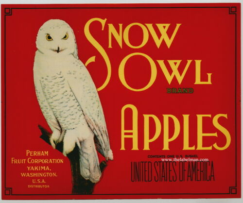 SNOW OWL Vintage Yakima WA Apple Crate Label red ***AN ORIGINAL FRUIT LABEL***
