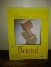 20 Sheets 100 lb 14 x 17 Inches Strathmore 300 Series Smooth Bristol Pad