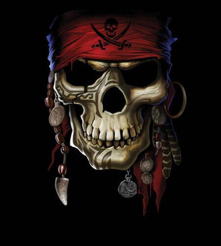 Pirate Skull 16x20 Poster Print Skeleton Buccaneer Swords Goth Punk Wall Art