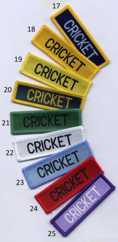 Cricket School Sports Flash Badge Patch 7.3 x 2.3cm