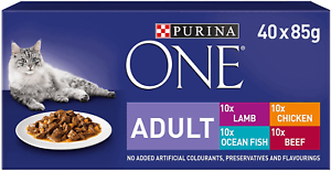 Purina-ONE-Wet-Cat-Food-Mini-Fillets-In-Gravy-40-Pouches