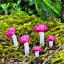 Fairy-Garden-Toadstools-and-Mushrooms-by-Fiddlehead-Miniature-Fairy-Gardens thumbnail 3