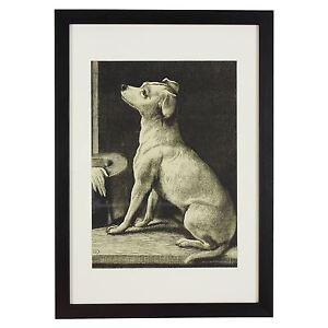 RSPCA-Heritage-Collection-A3-Black-Framed-Print-of-Dog-Sitting