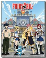 Fairy Tail Group & Building Sublimation Throw Blanket Free Shipping Natsu