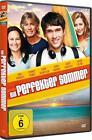 Ein perfekter Sommer (2015)