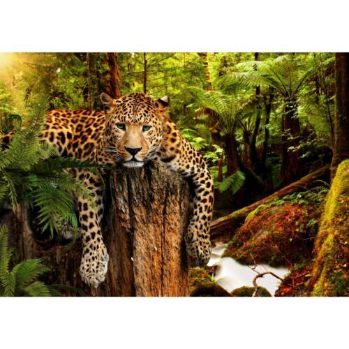 Fototapeten Tapete Fototapete Vlies Leopard Wandbilder XXL  3D Effekt Wohnzimmer