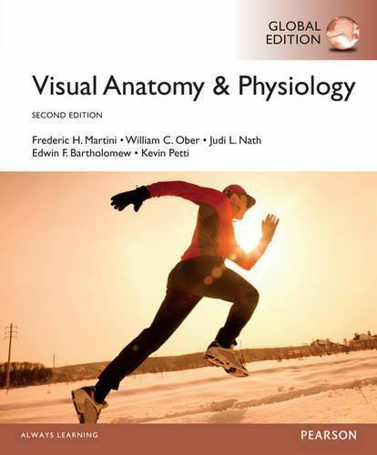 Visual Anatomy and Physiology: Visual Anatomy and Physiology 2 by ...