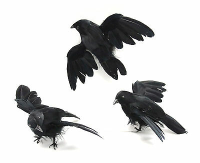 Black Feathered Flying Crow Birds Package of 6 Birds