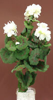 Silk Geranium Bush. White/green. 22 Tall. Cemetery Flowers, Wreaths, Etc.