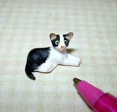 CALICO TABBY for DOLLHOUSE 1:12 Miniature Teeny Tiny Laying Resin Kitten