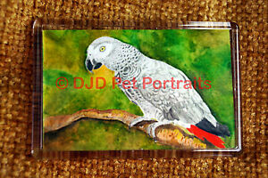 African-Grey-Parrot-Gift-Art-Fridge-Magnet-77x51mm-Birthday-Gift-Stocking-Filler