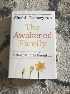 How to Raise Empowered Resilient and Conscious Children The Awakened Family