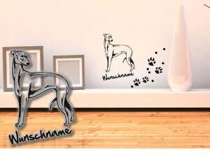 Wandtattoo-Greyhound-Grosser-Englischer-Windhund-H212-Hundepfoten-Tatze