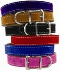 Auburn-Leathercrafters-QUALITY-Leather-Dog-Collars-SARATOGA-SUEDE-6-COLORS