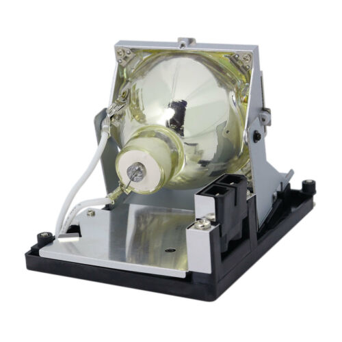 Lamp Housing For Optoma TH1060P Projector DLP LCD Bulb