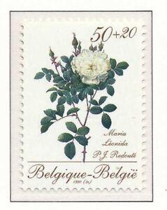 152956-TB-Mnh-2355-Belgique-1990-roses-de-Redoute-Maria-Leonida