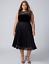 Lane-Bryant-Plus-Size-14-Sleeveless-Black-Velvet-Midi-Pleated-Lace-Lined-Dress thumbnail 1