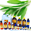 3ml-Essential-Oils-Many-Different-Oils-To-Choose-From-Buy-3-Get-1-Free thumbnail 85
