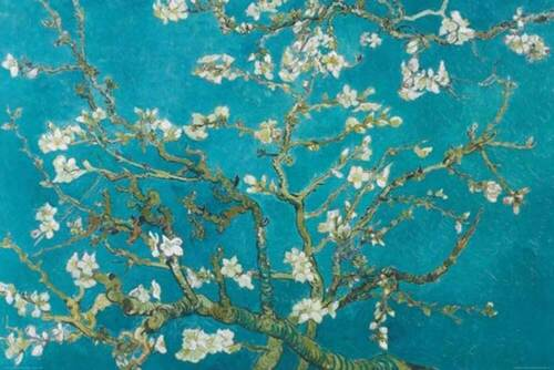 Van Gogh Vincent Größe 91,5x61 Almond Blossom San Remy 1890 Poster Druck