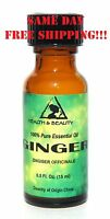 Ginger Essential Oil Aromatherapy 100% Pure Natural Glass Bottle 0.5 Oz, 15 Ml