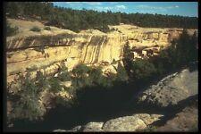 089002 Spruce Canyon A4 Photo Print