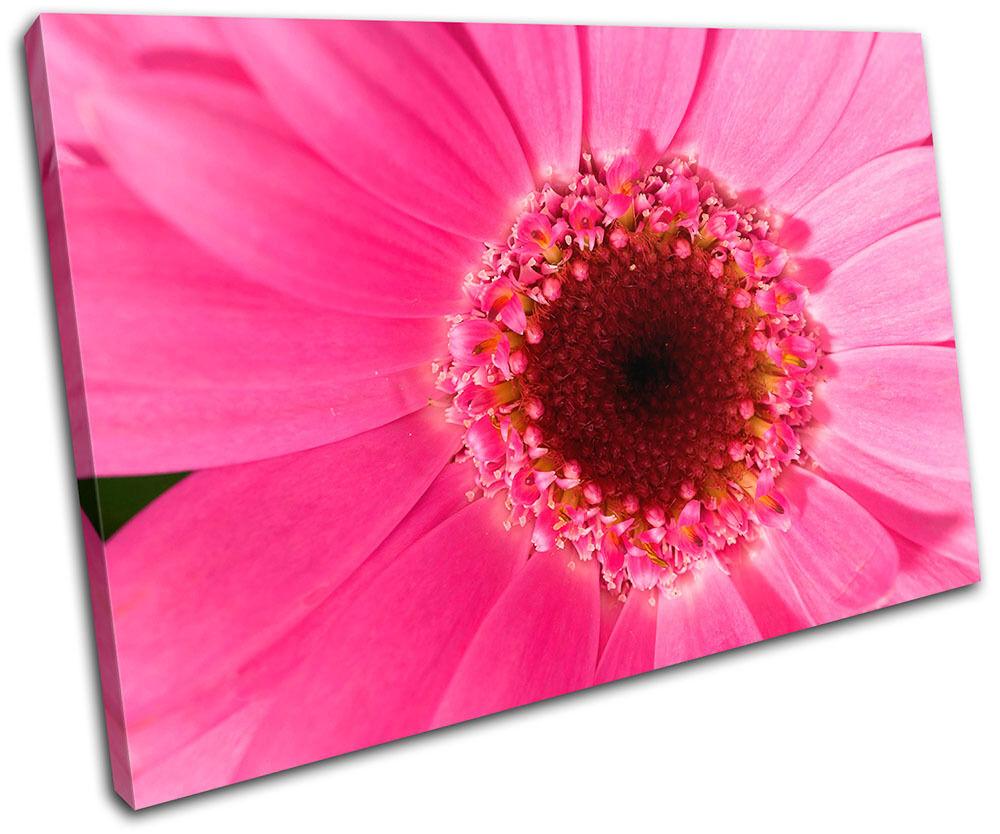 Flower Floral SINGLE SINGLE SINGLE TELA parete arte foto stampa 59be3d