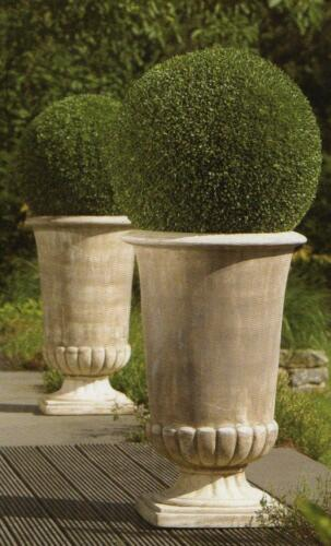 Amphore Pflanzkübel Vase Terracotta Pokal Blumenkübel 60 cm Höhe Neu Antik