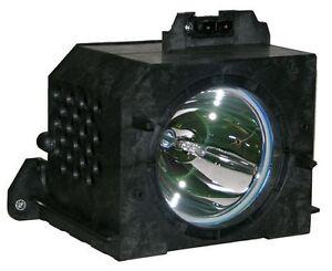 Samsung Bp96 00224j Bp9600224j Lamp For Hln5065w1x Xaa