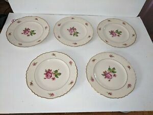 5-Federal-Shape-Syracuse-China-Victoria-Rose-Salad-8-034-Salad-Plate-w-gold-trim